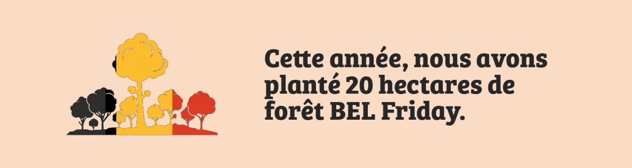 20 hectares de la fôret de BEL Friday